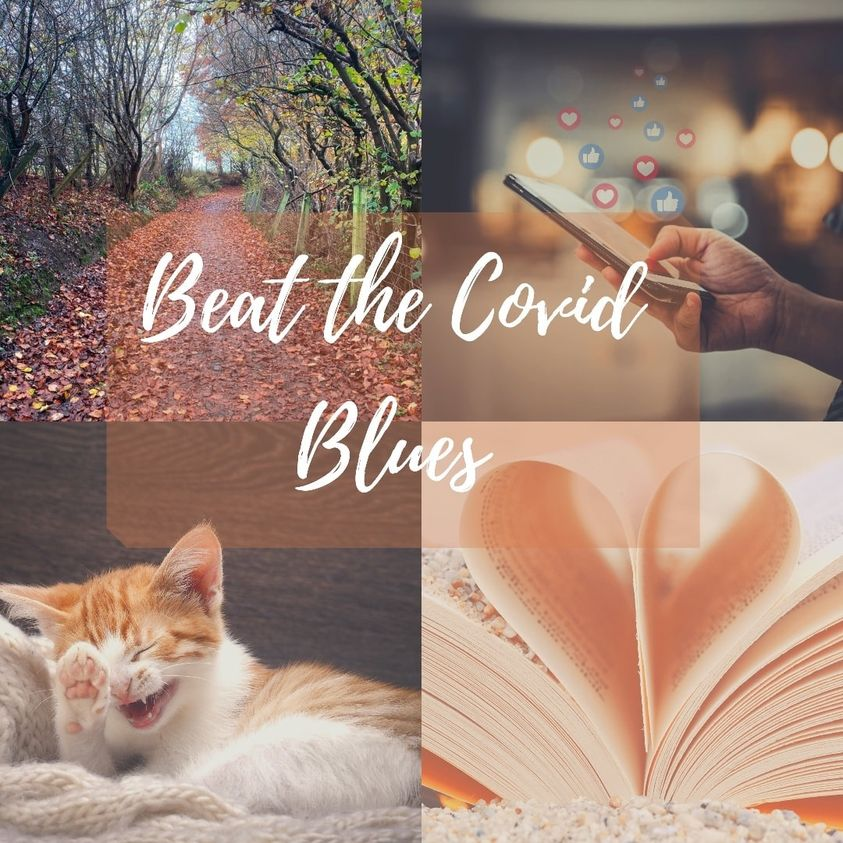 collage of cosy images with cat, book, phone and autumn leaves
